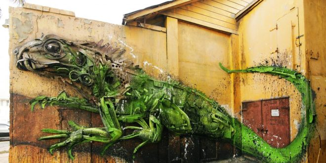 Bordalo-Aruba