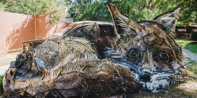 Bordalo2-Unexpected